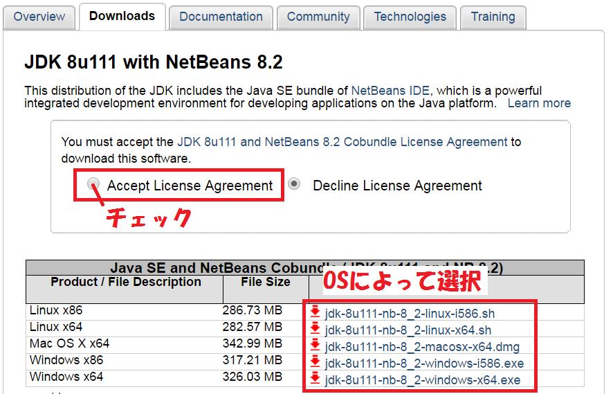 NetBeans2